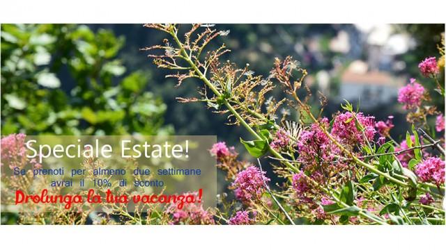 Speciale estate!